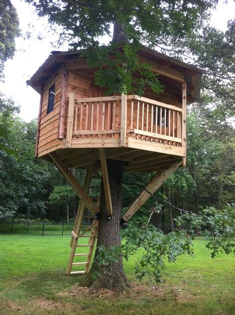 Octagon Shaped House Plans by 19 Amazing Treehouses That Aren T Just For Kids Porch Advice