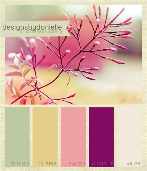 color palette inspiration color inspiration home ideas pinterest color