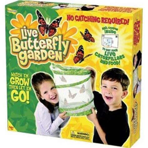 live butterfly garden the value of science toys