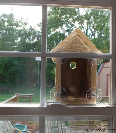 Window Bird House Nestbox