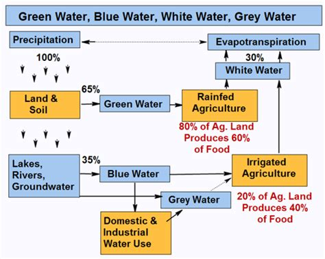 flowchart of water cycle simple flowchart water cycle what is hydrological cycle