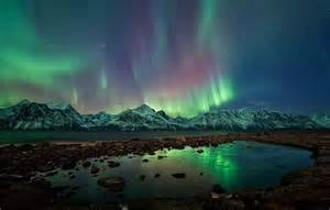 Northern Lights Landscaping Ole C Salomonsen Northern Lights Feather Of Me