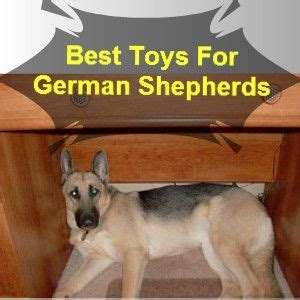 Him Kaos T Shirt Summer Time Dtg 31 best images about best toys for german shepherds on