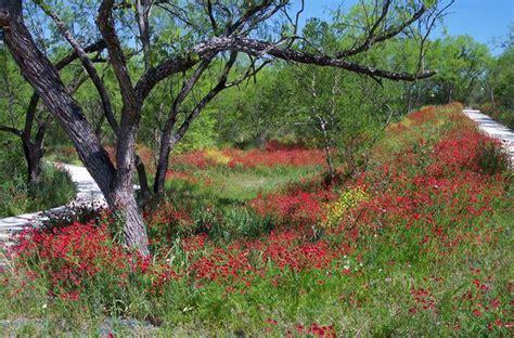 San Antonio Address Lookup Medina River Area Nature Rocks San Antonio