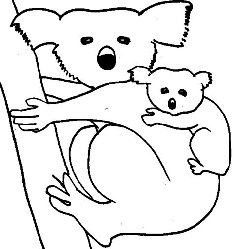 printable coloring pages koala animal coloring pages koala and bear animal free