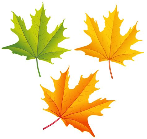 clipart autumn leaves clip autumn leaves yellow clipart best