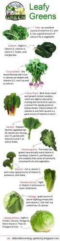 Leafy green vegetables infographic taher inc food