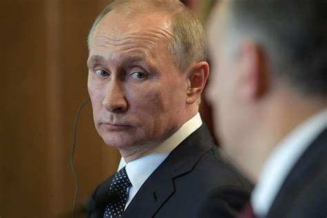 putin s republicans warm to putin as other americans hold dim view