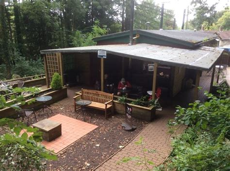 tea room forest these are cardiff s top 10 coffee shops according to tripadvisor wales