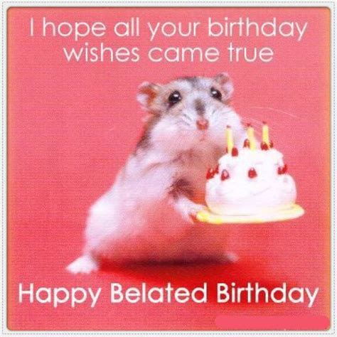 Happy Belated Birthday Meme - 16 best images about te laat on pinterest toys plush
