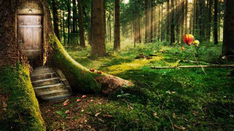 diseno de bosque encantado fondo de pantalla hd avance