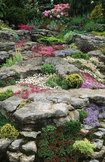 rock garden perennials 20 beautiful rock garden design ideas shelterness