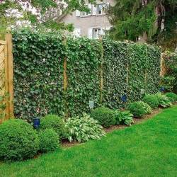 20 green fence designs plants to beautify garden design and yard landscaping gardens design