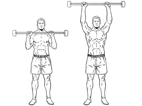 shoulder press diagram five exercises to increase your building