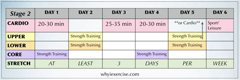 free exercise program workout calendar plus a guide to