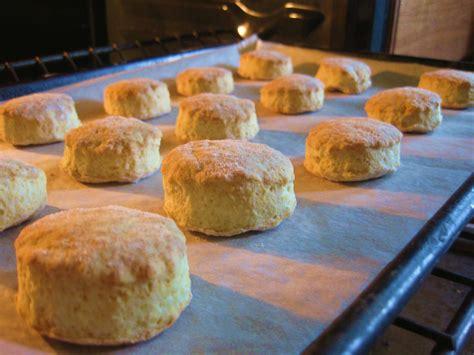 american buttermilk biscuits