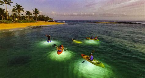 moonlight glass bottom kauai kayak tours kauai vacation - Glass Bottom Boat Kauai