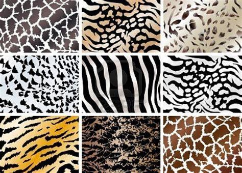 printable animal prints achtergronden dierenhuiden thema dierentuin pinterest
