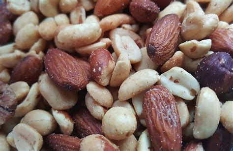 are almonds safe for dogs food archives tips