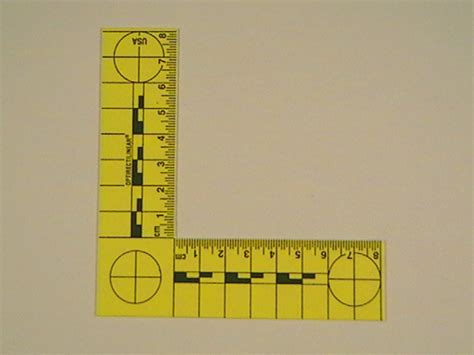 printable forensic ruler l shaped photomacrographic scale yellow