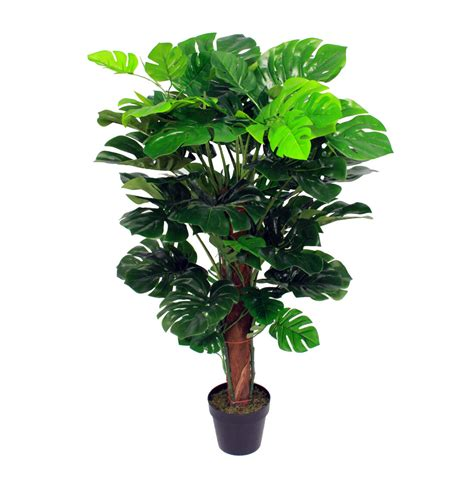 artificial cheese plant jungle plants blooming artificial