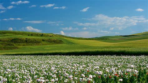 imagenes lindas naturaleza imagenes de naturaleza