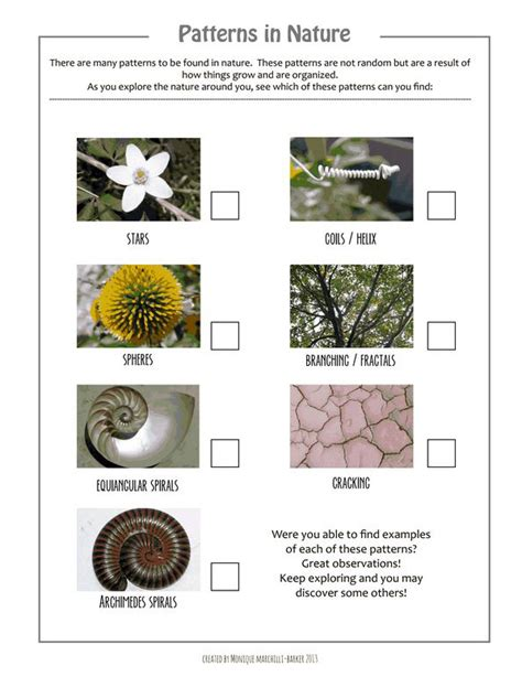 patterns in nature art activities patterns in nature scavenger hunt printable playful