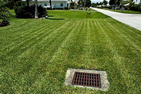 water drain backyard www pixshark images
