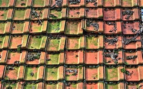 Peindre Des Tuiles En Terre Cuite by Peindre Pot Terre Cuite 28 Images 8 Diy 224 R 233