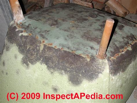 couch mold nationally certified home and mold inspector what mold