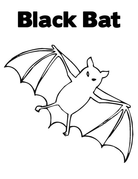 wild animal quot bat quot coloring pages free to print
