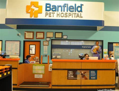banfield puppy plan optimum wellness at banfield pet hospital 174