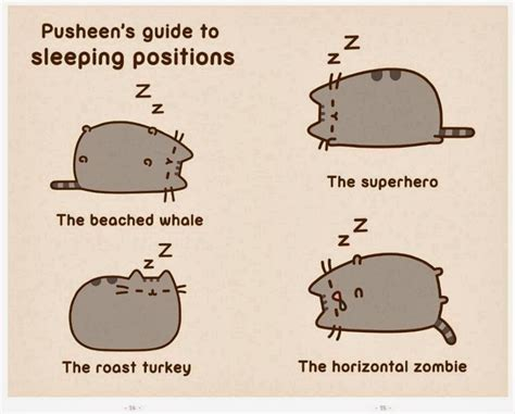 i am pusheen the cat you make up your mind you can also see some sle