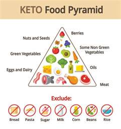 Keto Diet by Keto Diet The Ultimate Diet Guide Dietbros Com