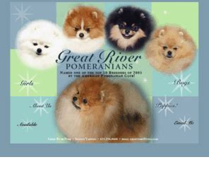 great river pomeranians greatriverpoms welcome to great river poms