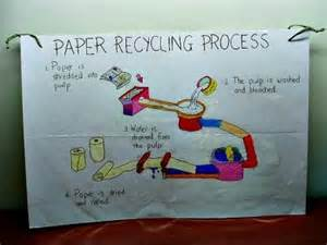 Paper Process At Home - ecology for and environmental science activities