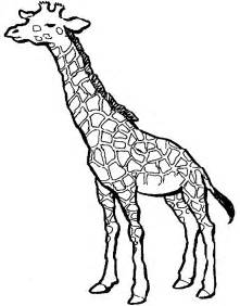 coloring pages of a giraffe az coloring pages