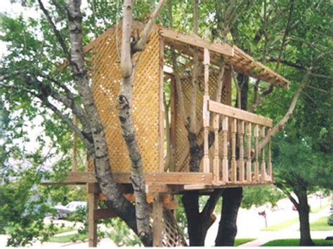 awesome tree house plans outdoor awesome treehouse plans and designs tree house building tree house for