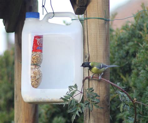 plastic bird feeders bird cages