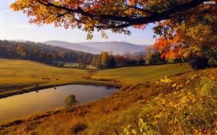 Field Barn Park Autumn Landscape Wallpaper
