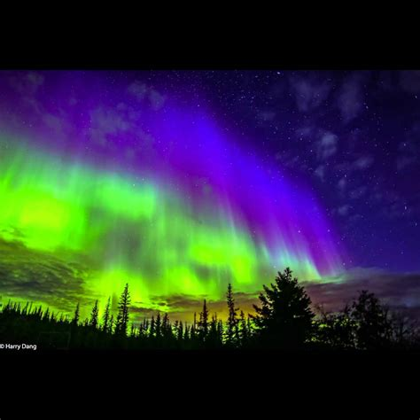 northern lights tours canada yellowknife northern lights tour decoratingspecial com