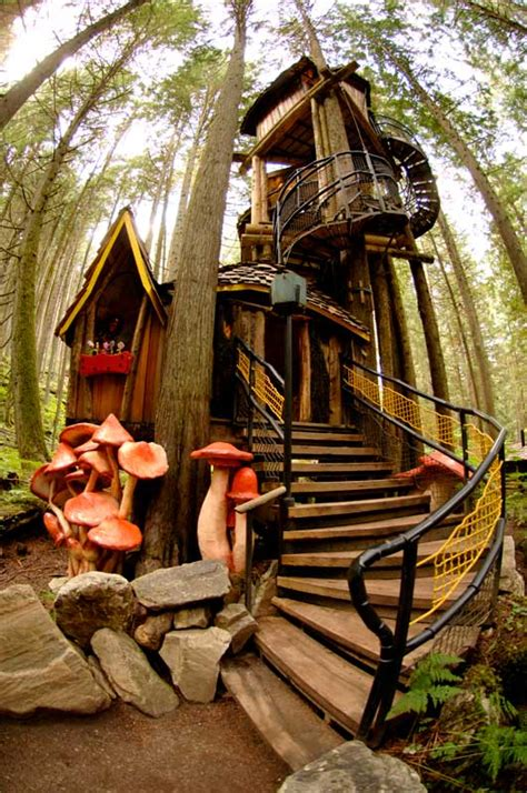 real life treehouse enchanted forest treehouse would you live here