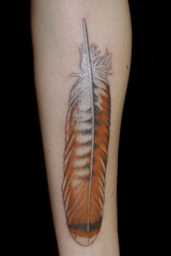 red tail hawk feather tattoo tattoos pinterest
