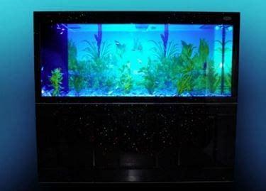 illuminazione a led acquario illuminazione acquario led acquario come scegliere l