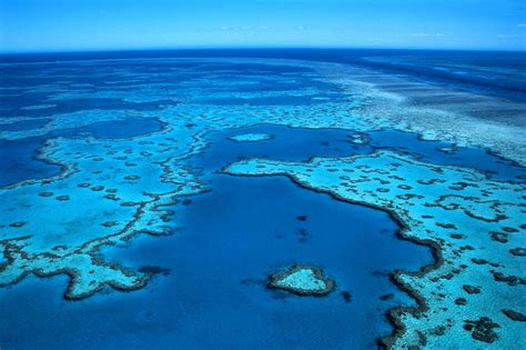 the the great barrier reef of australia its products and potentialities containing an account with copious coloured and photographic illustrations and coral reefs pearl and pearl shell bãªch books phoebettmh travel australia welcome to the great