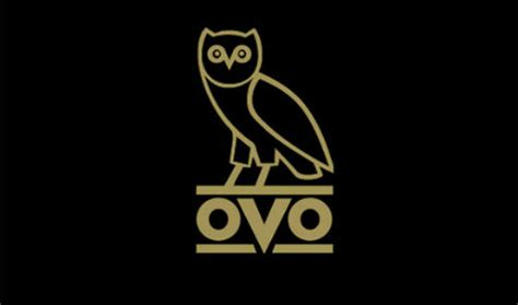 ovo owl wallpaper wallpapersafari