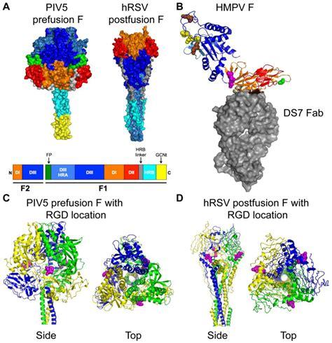 f protein ndv di box schematic di get free image about wiring diagram