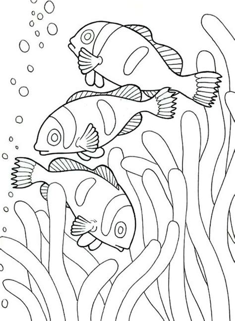 coloring pages of underwater animals 60 best images about kleurplaten zee strand on pinterest
