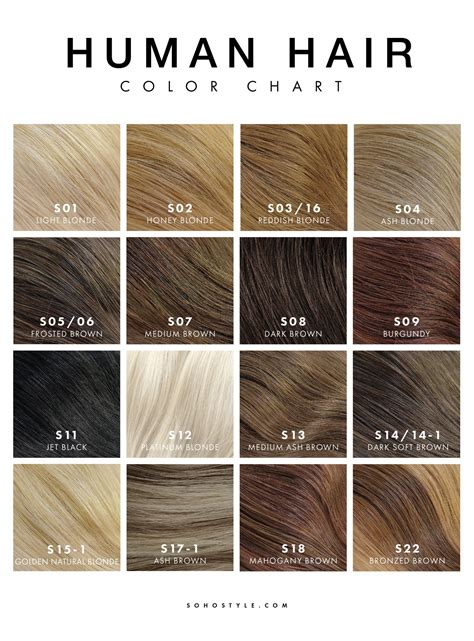 chart of haircolors hairstyle weft extensions malaysian remy hair of types of hair color chart dagpress