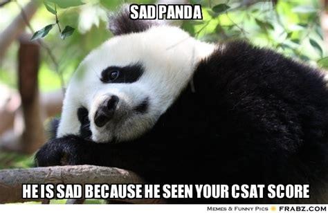 Sad Panda Meme - sad panda meme funny